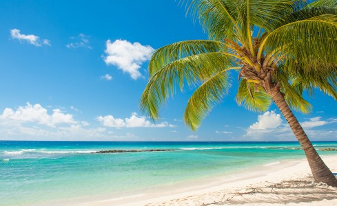 Tax Changes are Coming to Barbados